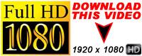 Visit Dildos HD